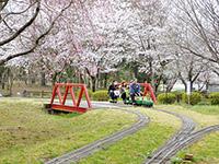 川本グリーンパーク